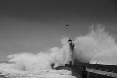 Farol de Felgueiras, Foz, Porto - Portugal (EJCastro) Tags: portugal porto foz mar ondas tempestade farol