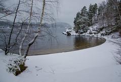 Winter lake (AstridWestvang) Tags: beach farris lake larvik snow trees