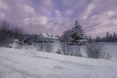 Winter morning (Alec_Hickman) Tags: winter snow ice cold frozen freeze house cottage scene christmastree colours pastel tractor snowblower canada atlantic maritimes clouds sky dawn sunrise morning