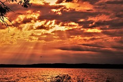 """Shine Its Everlovin' Light On Me""* (Jan Nagalski) Tags: michigan sunset goldenlight gold fierysky fire clouds rays sunrays reflectedlight water bay grandtraversebay silhouette orange jannagalski jannagal parasailing"