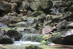 IMG_0659 (comtrag) Tags: flumegorgenh flumegorge nh newhampshire lincolnnh