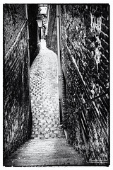 19th Century ? (Toucaly) Tags: france honfleur blackandwhite overcast automne fall noirblanc couvert escalier urbanscape autumn paysageurbain ruelle calvados stairs europe normandie