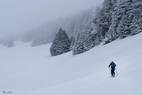 Winter exploration