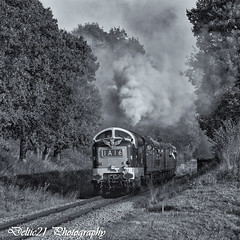20171006-IMG_6463-Edit (deltic21) Tags: deltic deltics 55 class napier type 5 english electric coco clag british rail railway railways train trains tracks bluebell preserved presevation gala diesel loco locmotive engine traction power thrash br blue green two tone monochrome bw canon sussex lineside trees station foxfield horsted keynes east grinstead sheffield park classic heritage scenery scenic countryside retro vulcan foundry track 55009 55002 55019 alycidon royal highland fusiliers kings own yorkshire light infantry
