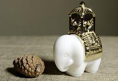 Perfume bottle Elephant (N.the.Kudzu) Tags: home tabletop stilllife perfume bottle elephant white glass pine cone pentaxk3