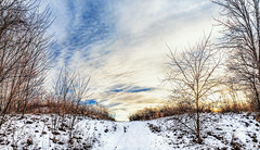 8R9A0678-80Ptzl1scTBbLGERM2 (ultravivid imaging) Tags: ultravividimaging ultra vivid imaging ultravivid colorful canon canon5dm3 clouds scenic sunsetclouds sky winter snow path sunset pennsylvania pa rural panoramic farm fields