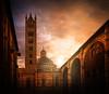 Duomo di Siena (Juan Figueirido) Tags: duomodisiena siena duomo catedraldesiena cathedralofsiena tuscany toscana italy italia travel