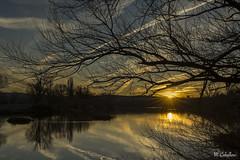 RIO TORMES (mañega) Tags: atardecer invierno reflejos sol serenidad nikon5200 calidez sunset riotormes salamanca tormes
