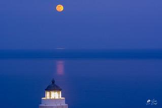 La luna: ci sono notti in cui sembra produrre un miele bianco di sogni, di solitudine e di silenzio....