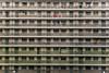 Individuality (channyuk (using Albums)) Tags: shekkipmei kowloon hongkong nikond800 70200mm nikkorafs70200mmf4vr
