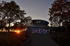 Battery Park, 10.18.15 (gigi_nyc) Tags: nyc newyorkcity batterypark seaglasscarousel sunset