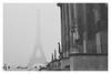 La Tour Eiffel disparait (Cécile75 - Film only) Tags: film eiffel eiffeltower ilford contax g2 zeiss analogue analogique argentique bw blackwhite blackandwhite bwfp paris france foggy snow winter monochrome nb noiretblanc noirblanc