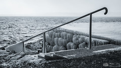 Descente en eaux glacées. (Philippe Bélaz) Tags: nb ports embruns escaliers froid gelé glaces glacial hiver lacs maincourante noirblanc plages