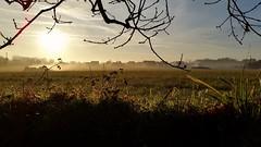 Saint Quay Portrieux, matin d'hiver (Chaufglass) Tags: matin hiver bretagne côtesdarmor paysage soleil aurore saintquayportrieux brume