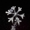 17jan18V (peterobrien186) Tags: diy homemade camera setup snow snowflake snowcrystal crystal winter macro nature arms dendrite plate contrast white sky bw blackandwhite new digital