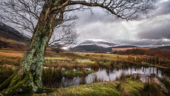 Cold mountain.... (Einir Wyn Leigh) Tags: landscape mountain snow winter outside sunlight river water valley nature beauty walking tree moss path snowdonia wales cymru colorful clouds weather february