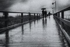 rainy day - Bansin/Usedom (www.streetphotography-berlin.com) Tags: rain rainyday pier baltic sea people umbrella reflection perspective street streetphotography streetlife blackandwhite blackwhite fineart bansin usedom germany