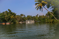 Poovar Back Waters (Balaji - 4.5 Million +Views and Growin) Tags: kerala backwaters scenic turist trave resort tourism indiatourism green