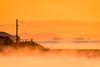 気嵐の朝 #3ーThe ice fog morning #3 (kurumaebi) Tags: yamaguchi 秋穂 nikon d750 nature 自然 landscape 海 sea morning 朝 景色 sunrise icefog 気嵐 蒸気霧 mirage 浮島現象