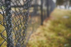 Linked (flashfix) Tags: february232018 2018inphotos kingston ontario canada nikond7100 40mm nikon flashfix flashfixphotography fog fence rain grass nature mothernature university black rainy damp fencefriday hff