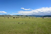 Orkhon valley, Mongolia - Meadow (GlobeTrotter 2000) Tags: orkhon steepes asia central explore ger holidays horse mongolia nature tent tourism travel valley visit yurt