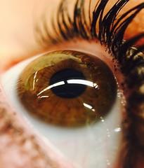 Golden eye (hectorss_5) Tags: eye olloclip iphone macro