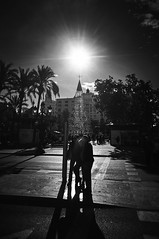 Christmas Tree Star (elgunto) Tags: street people tree star sun sky valencia christmas blackwhite bw silhouette highcontrast light shadows sonya7 nikon2035 nikkor manuallense