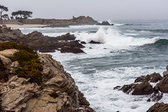 2018-Jan-California-1057 (4x4Foto) Tags: 2018 bigsur california deetjensrestaurant emeraldbay january montereybay pacificcoasthighway pacificgrove pacificocean southlaketahoe flowers ocean plants rocks sunset sunshine surf surfing travel trees waves virginia unitedstates