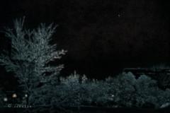 Pluie d'hiver .. (Dare2drm) Tags: arbre glace soirée ice trees night lights lumière djfotos pluie rain nuit averses eau nuages ottawa