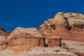 Slickrock Landscape in Canyonlands National Park's Salt Creek Canyon