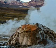 Fumarole at El Tatio Geyser Field, Chile (donnatopham) Tags: