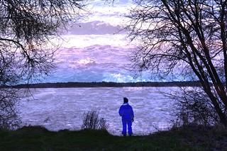 An der Schlei mit dem Sonnenuntergang im Rücken; Borgwedel (50)