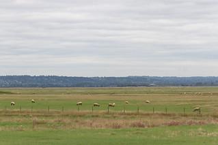 Rothko-esque Landscape