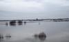 Hoogwater 2018 7 (megegj)) Tags: gert flood