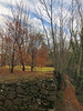 (Paolo Cozzarizza) Tags: italia friuliveneziagiulia pordenone castelnovodelfriuli alberi muro cielo sentiero