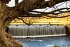 Studley water gardens (@Bradders) Tags: studley water gardens longexposures river sky trees waterfall nationaltrust