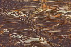 _MG_9806 (gaujourfrancoise) Tags: china chine yunnan gaujour paddyfields yuanyang yuanyangcounty ricepaddyterracing worldheritagesite rizièresenplateau ocher ocre abstract abstrait