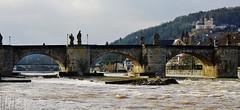 Die Alte Mainbrücke - The Old Main Bridge (cammino5) Tags: januar 2018 würzburg altemainbrücke hochwasser käppele franken deutschland
