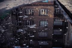 iced (ewitsoe) Tags: warsaw warszawa poland canon eos 50mm 6dii street urban man woman walking pedestrian cold winter streetscenes citylife life wanderign reflections polska