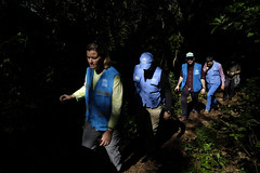 Guatemala. Deputy High Commissioner on mission to Central America (ACNUR Guatemala) Tags: bordercrossing day femalehumangender fivepeople kellyclements outdoors shadow tree undeputyhighcommissionerforrefugees unhcrstaff vestunhcrvisibility visit walking elceibo peténstate guatemala gua