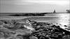 IJSselmeer (herman van hulzen) Tags: hermanvanhulzen nederland netherlans hoorn hoornsehop markermeer ijsmeer icelake