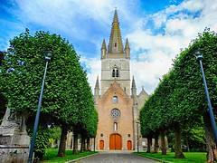 Gistel (Karl Van Loo) Tags: gistel kerk church boom bomen tree