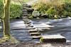 Stepping Stones,Hardcastle Crag (Kingsley_Allison) Tags: hardcastlecrag steppingstones westyorkshire water beck river crossings hebdenbridge national trust d7200 nikon