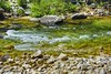 "Deep Creek (jimgspokane) Tags: ""nikonflickraward"" themagrudercorridor idaho creeks mountains forests naturewatcher"