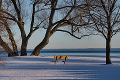Winter Bench - Golden Hour (KWPashuk) Tags: nikon d7200 tamron tamron18400mm lightroom luminar luminar2018 kwpashuk kevinpashuk bench winter park outdoors tree nature lake bronte beach oakville ontario canada