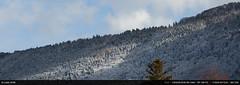 Salève (Ludtz) Tags: ludtz canon canoneos5dmkiii ef135|2l winter hiver 74 alpes alps hautesavoie salève montagne mountain mountains montagnes neige snow cold froid sapins pines pinetree