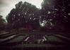 Reflected (DreamEstel) Tags: hornimanmuseum zenit11 kodakcoloriso200 takumar35mmf35 35mm epsonv500 analog gardens m42