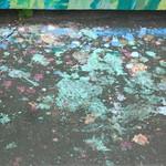 DSC03759 thumbnail