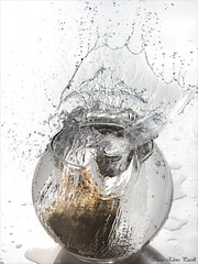 Splash 2 (Elanor82) Tags: canon eos 5d mark3 mrk3 mk3 85mm splash stilllife schizzo spruzzo pitcher jug decanter carafe potato yellow giallo boccia acqua water white background object