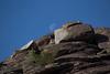 Desert_Road_Trip-4737 (smithjustind) Tags: arizona newyears2018 roadtrip robyn